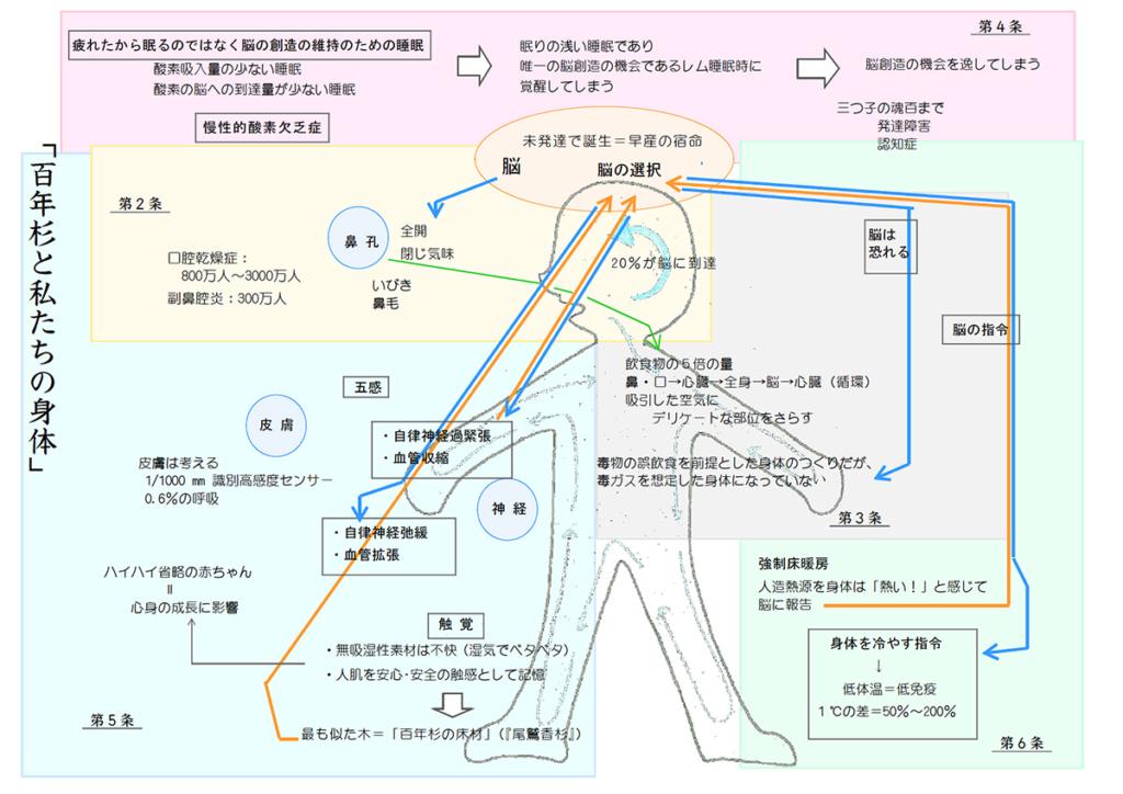 下図は「百年杉の8か条」で述べさせていただく内容をチャートにしたものです。