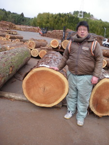(落札できた樹齢200年杉と巨体の畦地秀行くん)