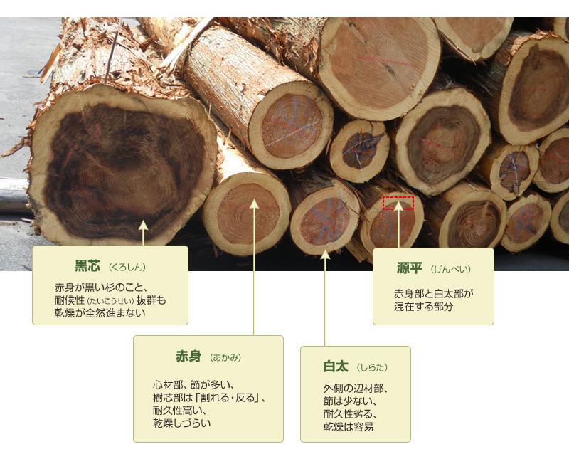 【黒芯 (くろしん)】赤身が黒い杉のこと、耐候性(たいこうせい)抜群も乾燥が全然進まない。【赤身 (あかみ)】心材部、節が多い、樹芯部は「割れる・反る」、耐久性高い、乾燥しづらい。【白太 (しらた)】外側の辺材部、節は少ない、耐久性劣る、乾燥は容易。【源平 (げんぺい)】赤身部と白太部が混在する部分