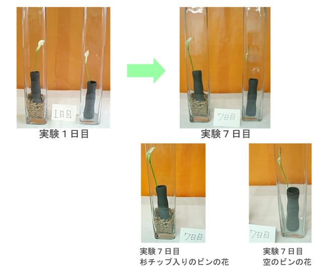 【百年杉】による空気の変化による具体例